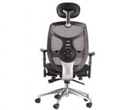 stylish ergonomic office chair